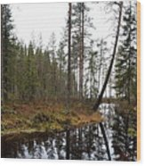 Haukkajoki Panorama 2 Wood Print