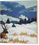 High Country Elk Wood Print