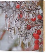 Holiday Ice Wood Print