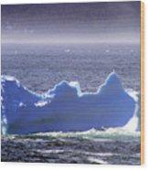 Iceberg Floating By Wood Print