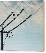 In The Sky... Wood Print