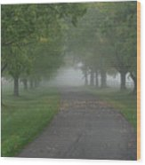 Knox Fog 6038 Wood Print