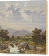 Landscape Near Abtenau Wood Print