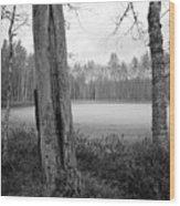 Liesilampi 3 Wood Print
