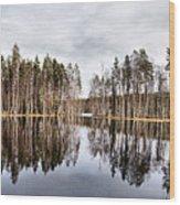 Liesilampi Panorama Wood Print