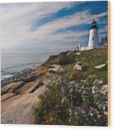Lighthouse With Wildflowers Wood Print