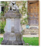 Little Angel With A Dog In The Montresor Garden In The Loire Valley Fr Wood Print