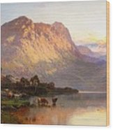 Loch Lomond And A Trout Stream Wood Print