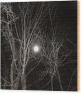 Lonely Night Wood Print
