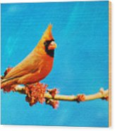 Male Northern Cardinal Perched On Tree Branch Wood Print