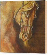 A Winning Racer Brown Horse Wood Print