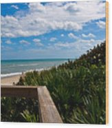 Melbourne Beach On The East Coast Of Florida Wood Print