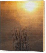 Mist And Lake Reeds At Sunrise Wood Print