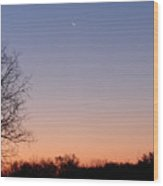 Morning Moon Wood Print