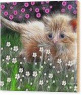 Mouse Hunter Wood Print