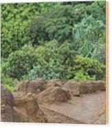 Muddy Kalalaua Trail - Kauai Wood Print