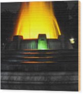 Mulholland Fountain Reflection Wood Print by Clayton Bruster