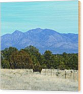New Mexico Mountains Wood Print