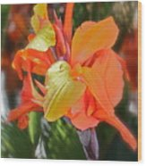 Orange Bright Wood Print by Maureen J Haldeman