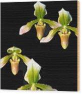 Orchid Quads Wood Print