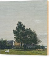 Party Near The Lime Kiln With Views Towards The Copenhagen  Wood Print