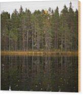 Pitkajarvi 2 Wood Print