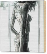 Prior Evolution Of Eve Figure 4  Wood Print by Greg Coffelt