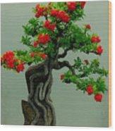 Red Berried Bonsai Wood Print