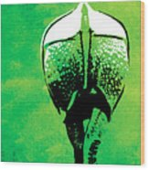 Rhino Animal Decorative Green Poster 6 - By  Diana Van Wood Print