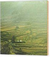 Rice Terrace  Wood Print