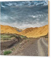 Road In The Mountains Wood Print