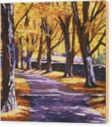 Road Of Golden Beauty Wood Print