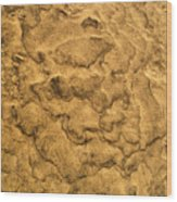 Sand Map Wood Print
