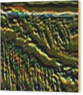 South Rim- N -green Grandeur Wood Print