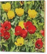 Spring Landscape With Tulips Wood Print