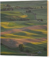 Steptoe Butte 10 Wood Print