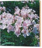 Summer Oleander Wood Print