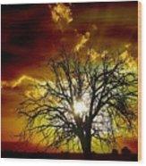 '' Sunset Tree ''  Wood Print