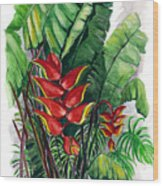 Tiger Claw .. Heliconia Wood Print