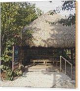 Tiki Hut  Wood Print