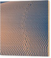 Tracks At First Light In Death Valley Wood Print