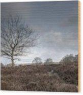 Tree On The Common  Wood Print