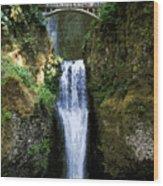 Two Falls Wood Print