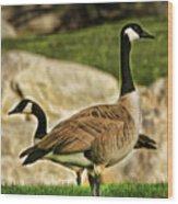 Two Geese Wood Print