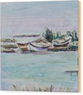 Venice Lagoon Wood Print