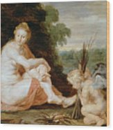 Venus And Cupid Warming Themselves  Wood Print