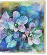 Wildflowers 5  -  Polemonium Reptans - Digital Paint 4 Wood Print
