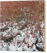 Winter Harvest 2 Wood Print