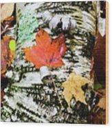 001 Wood Print