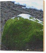 0027 Wood Print